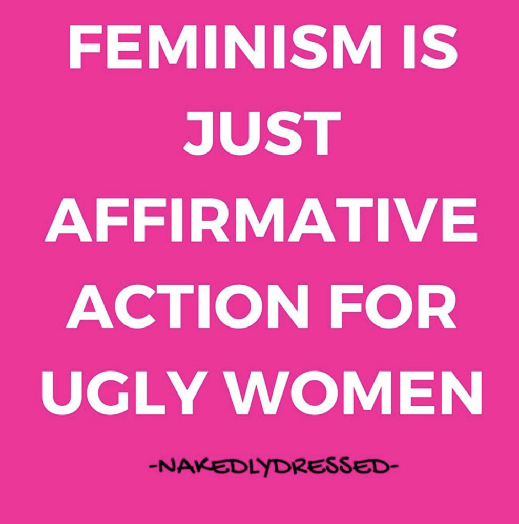 Feminist is just affirmative action for ugly women